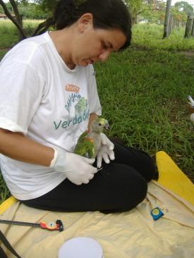Taiana Pantanal nov 2006 070