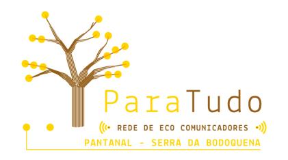 ParaTudo Logo